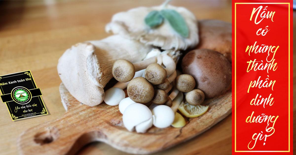 thành phần dinh dưỡng trong nấm