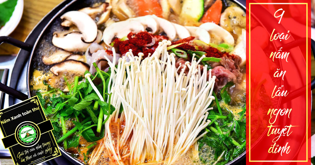 9 loại nấm ăn lẩu ngon nhất