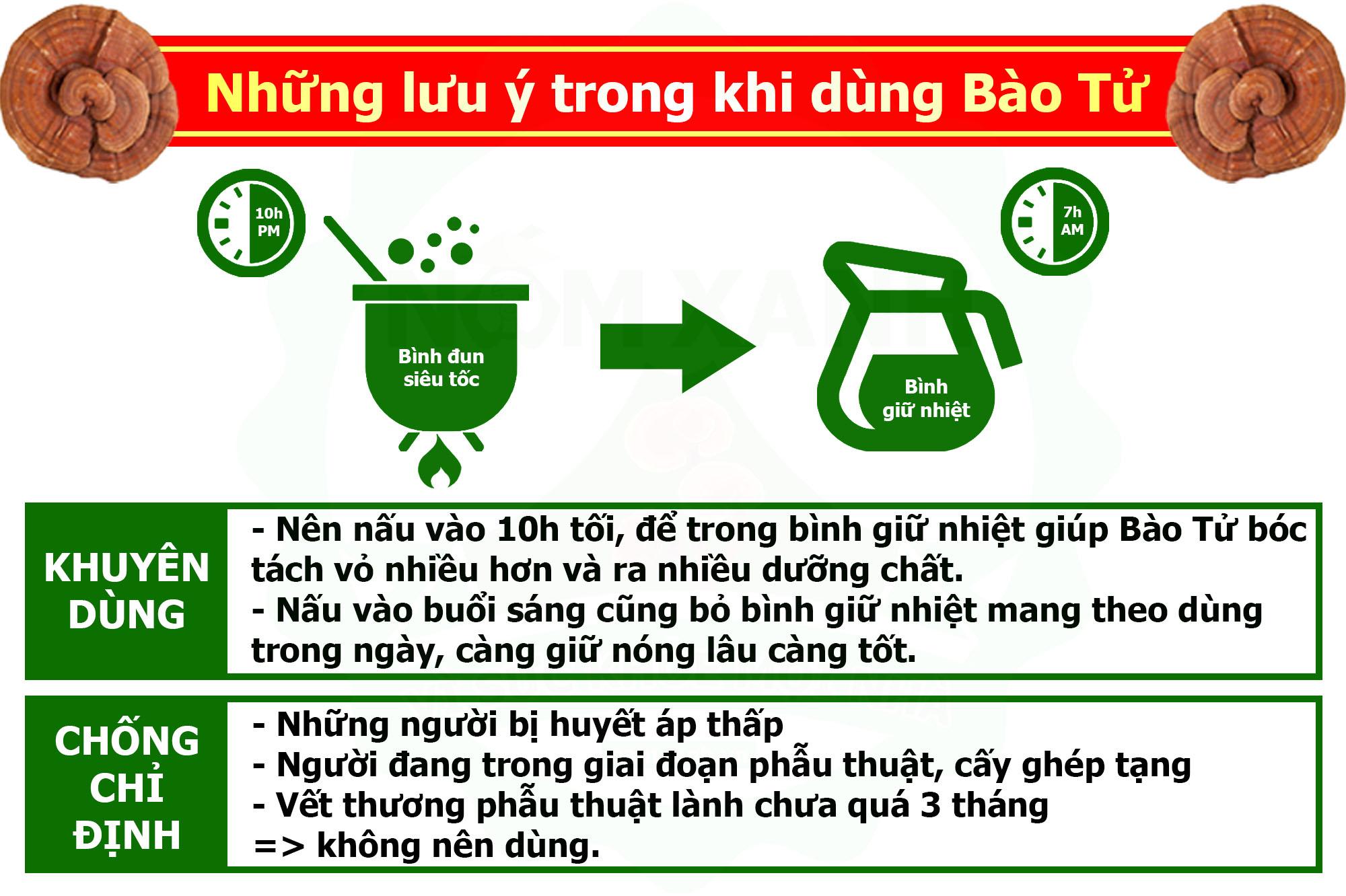 lưu ý cách dùng nấm linh chi