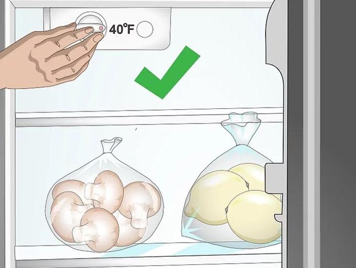 Bảo quản nấm ở nhiệt độ tủ lạnh dưới 4°C