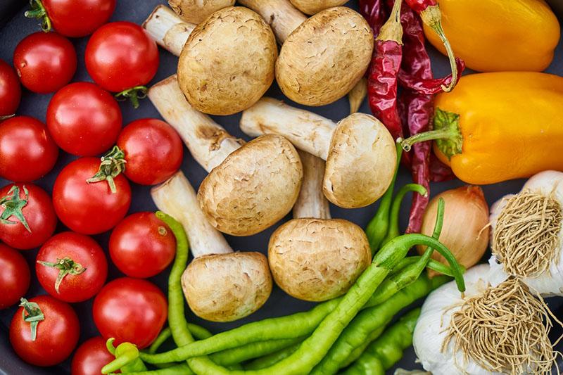 Hàm lượng dinh dưỡng của nấm